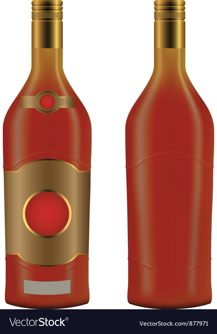 Cuban rum bottle vector image