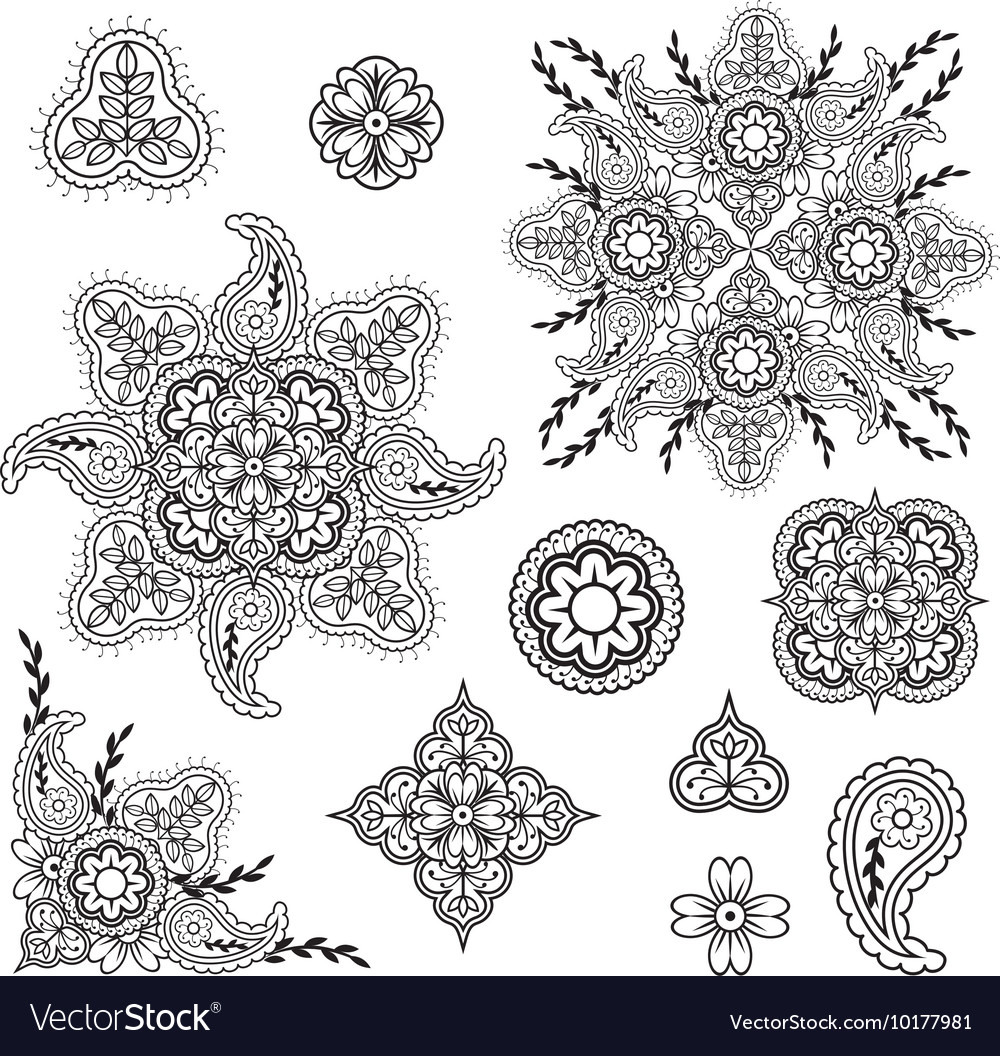 Floral and paisley elements vector image
