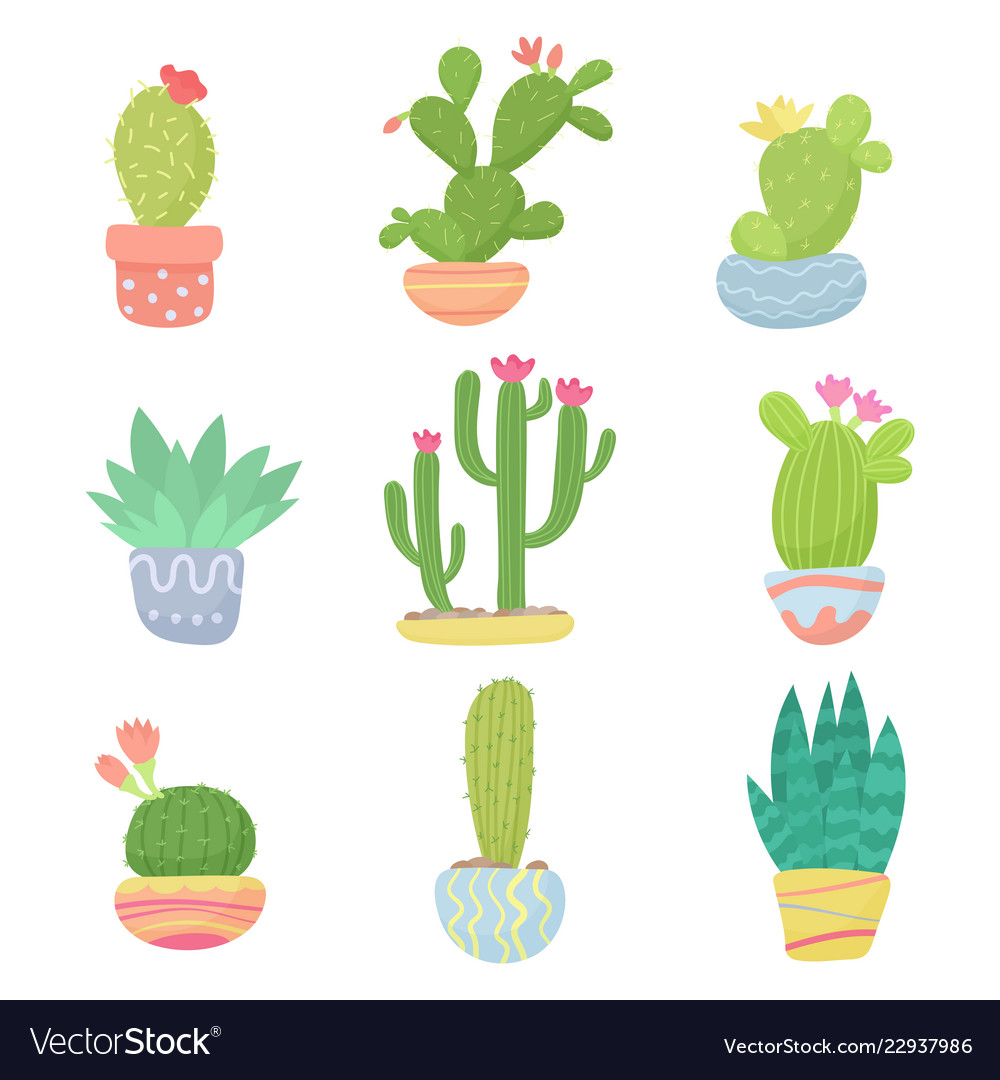 Set flat cartoon cute desert or home pot cactus