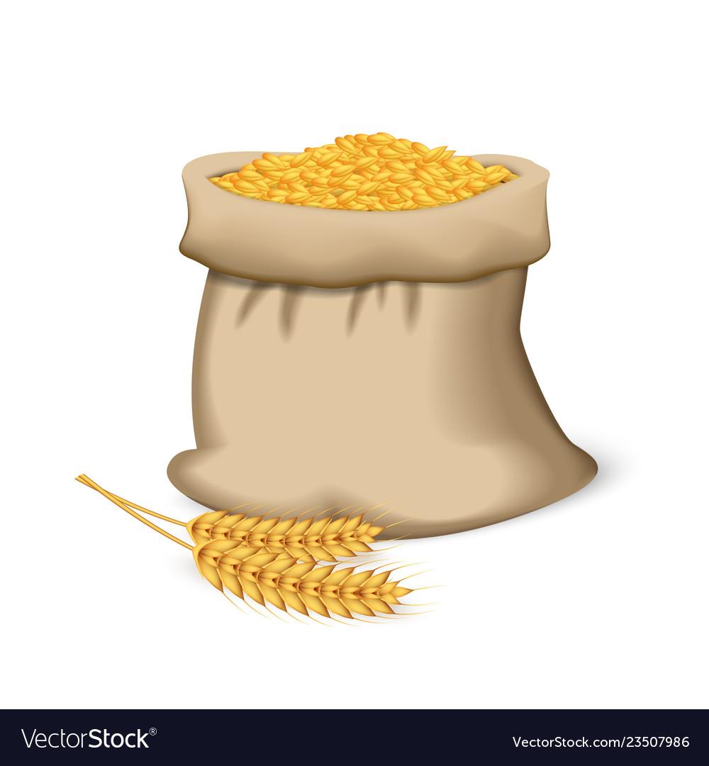 Wheat sack icon realistic style