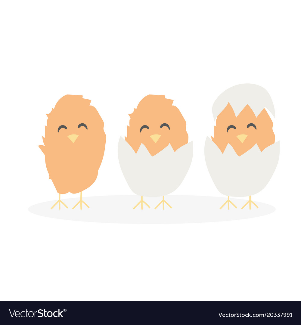 Cartoon cute easter baby chikens hatched from egg