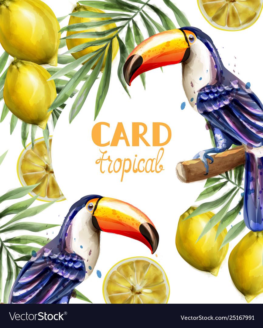 Toucan and lemon tropic card watercolor