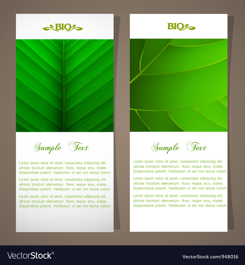 Two bio banners vector image