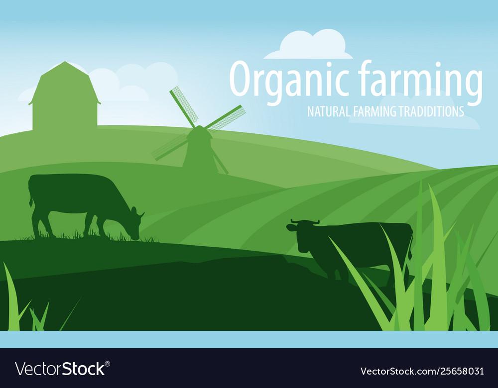 Rural landscape organic farming