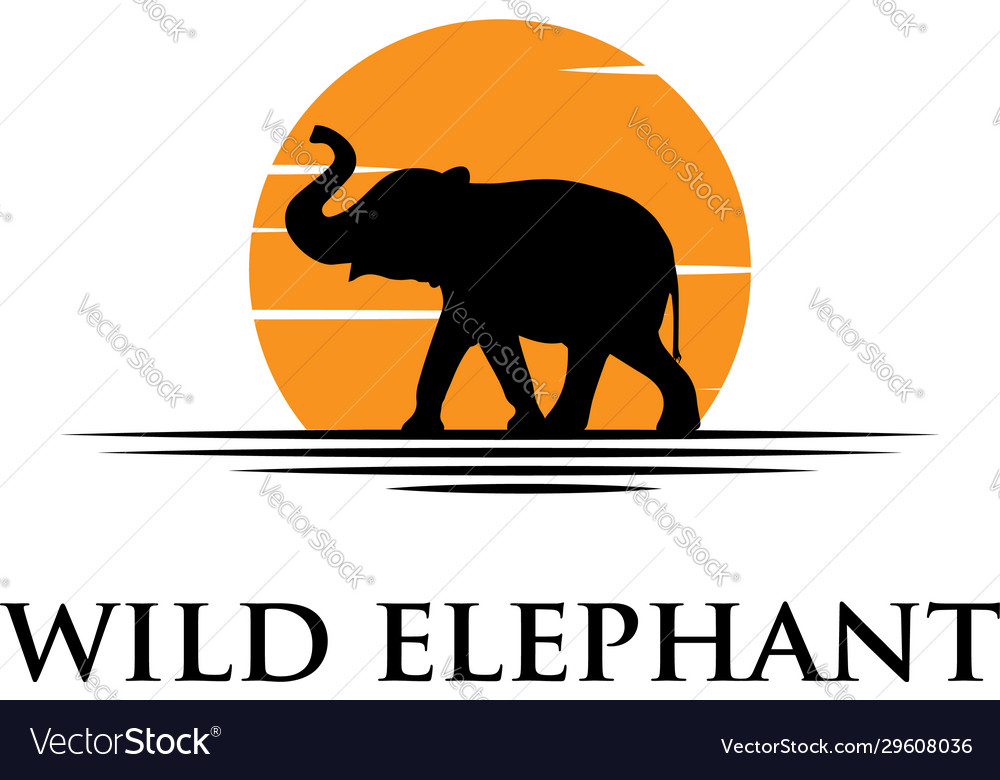 Black elephant silhouette logo with sunset