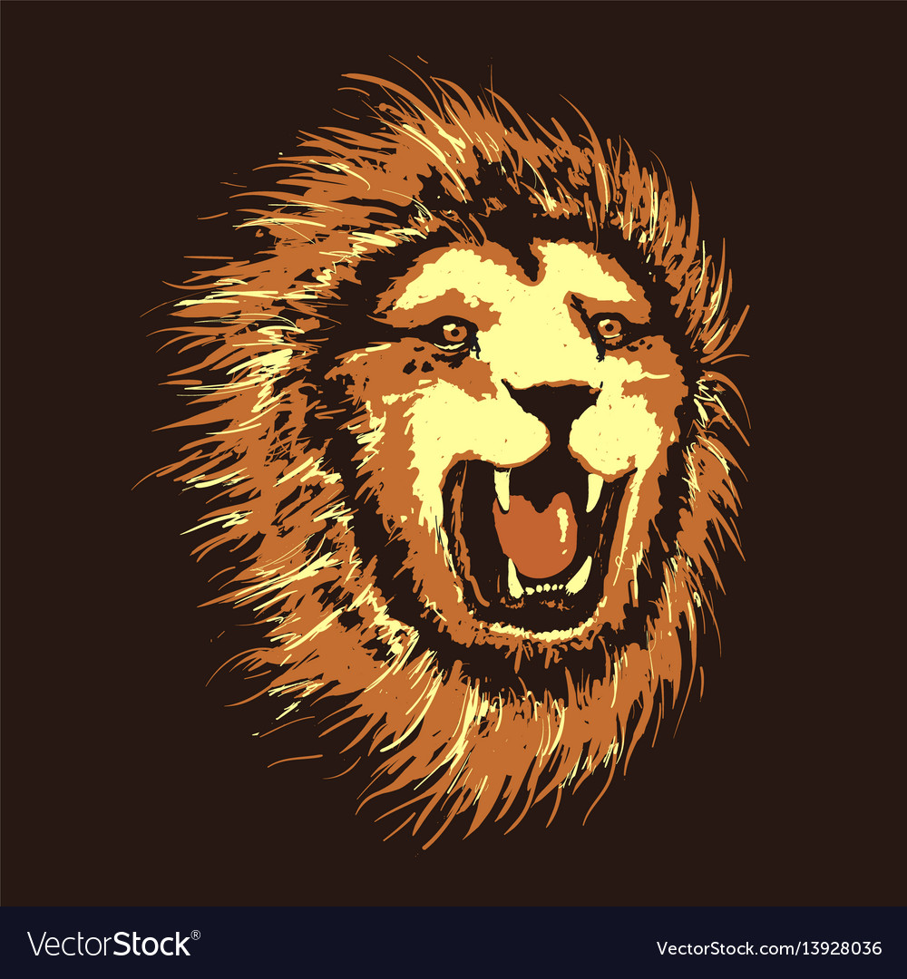 Head of angry lion