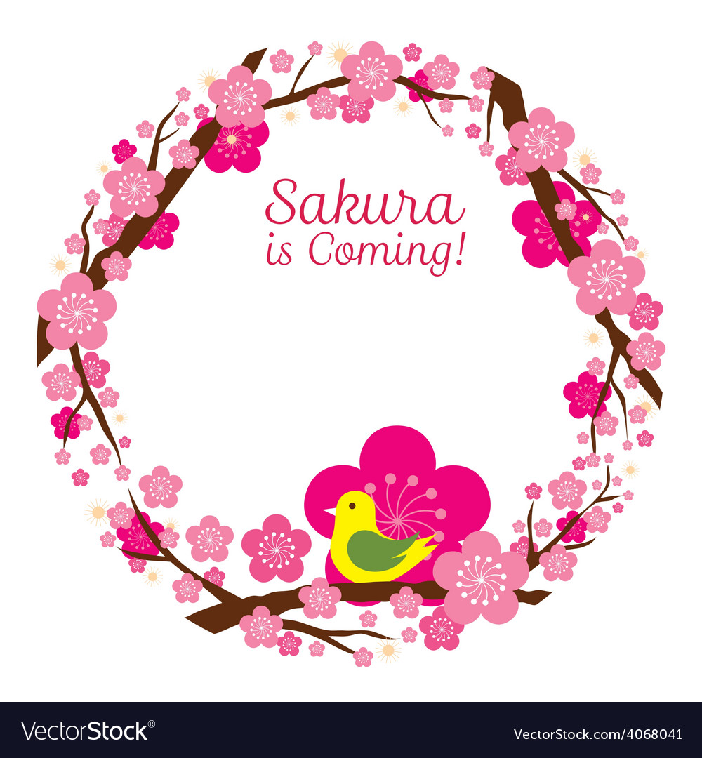 Cherry Blossoms or Sakura flowers Wreath vector image