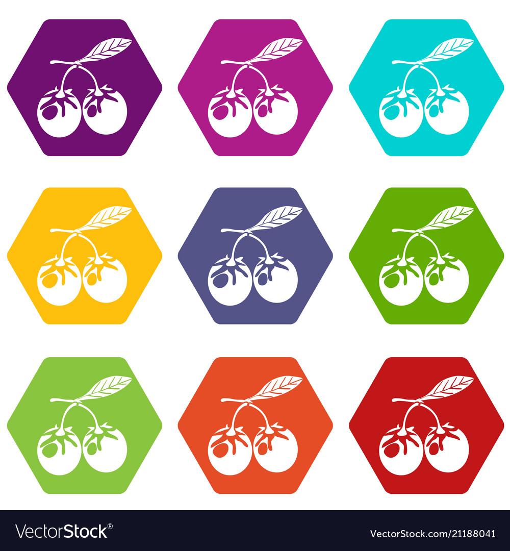 Eco berry icons set 9