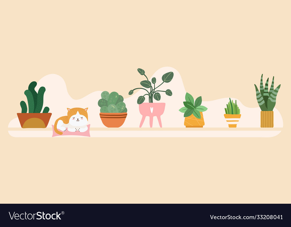 Home garden banner floral pots on shelf