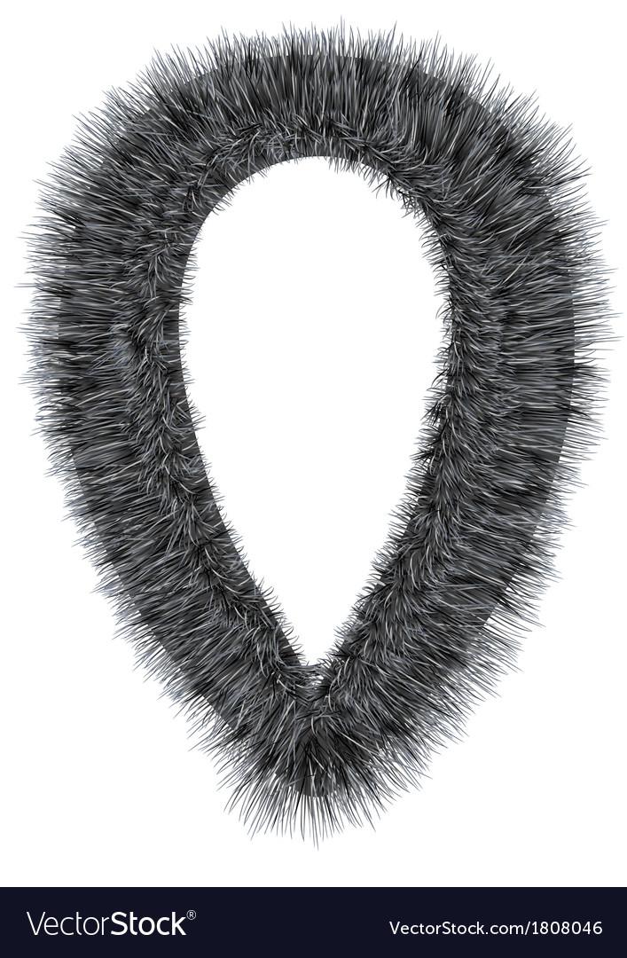 Fur collar vector image