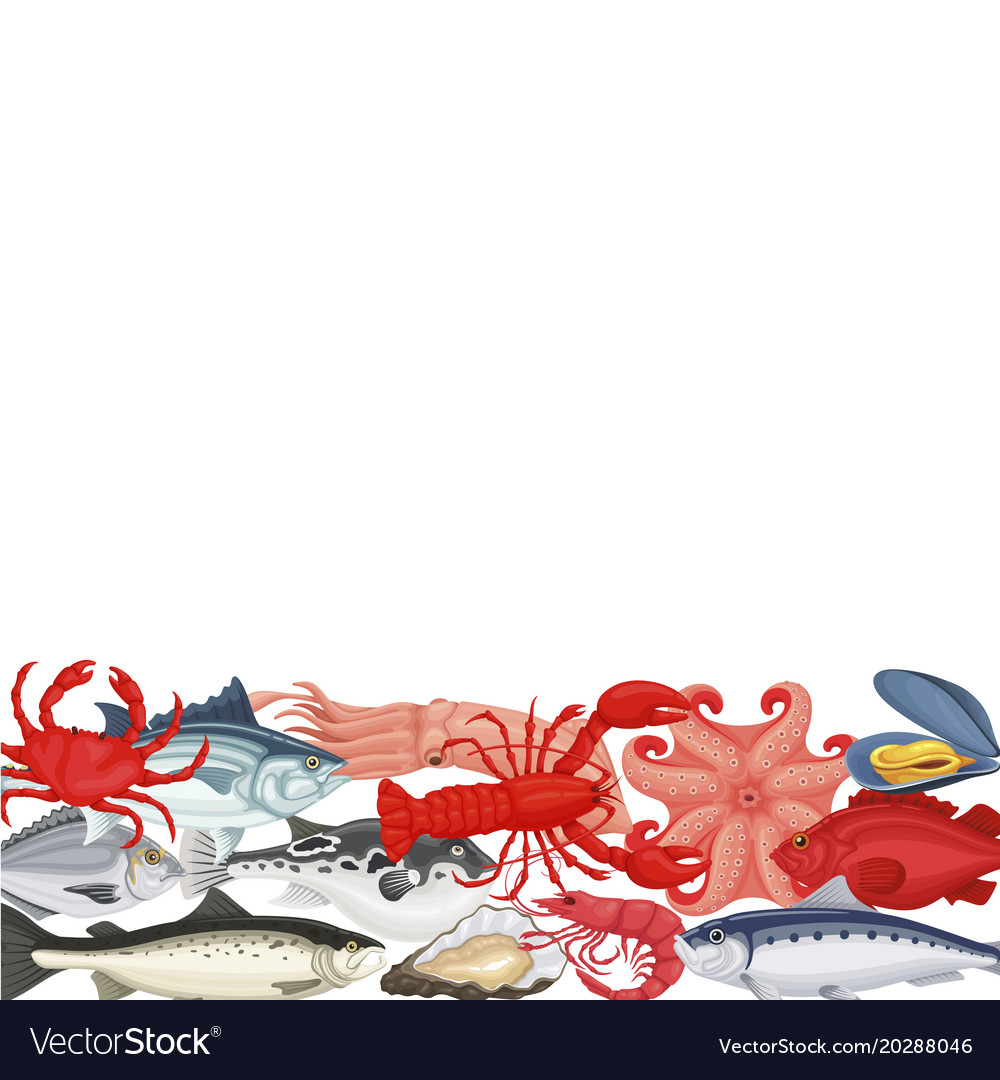 Seafood background copyspace vector image