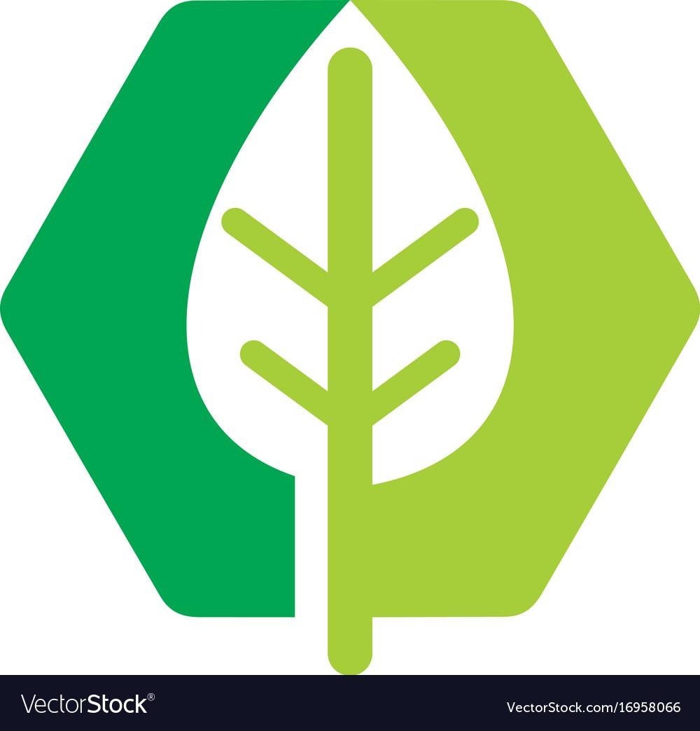 Abstract green leaf eco bio logo