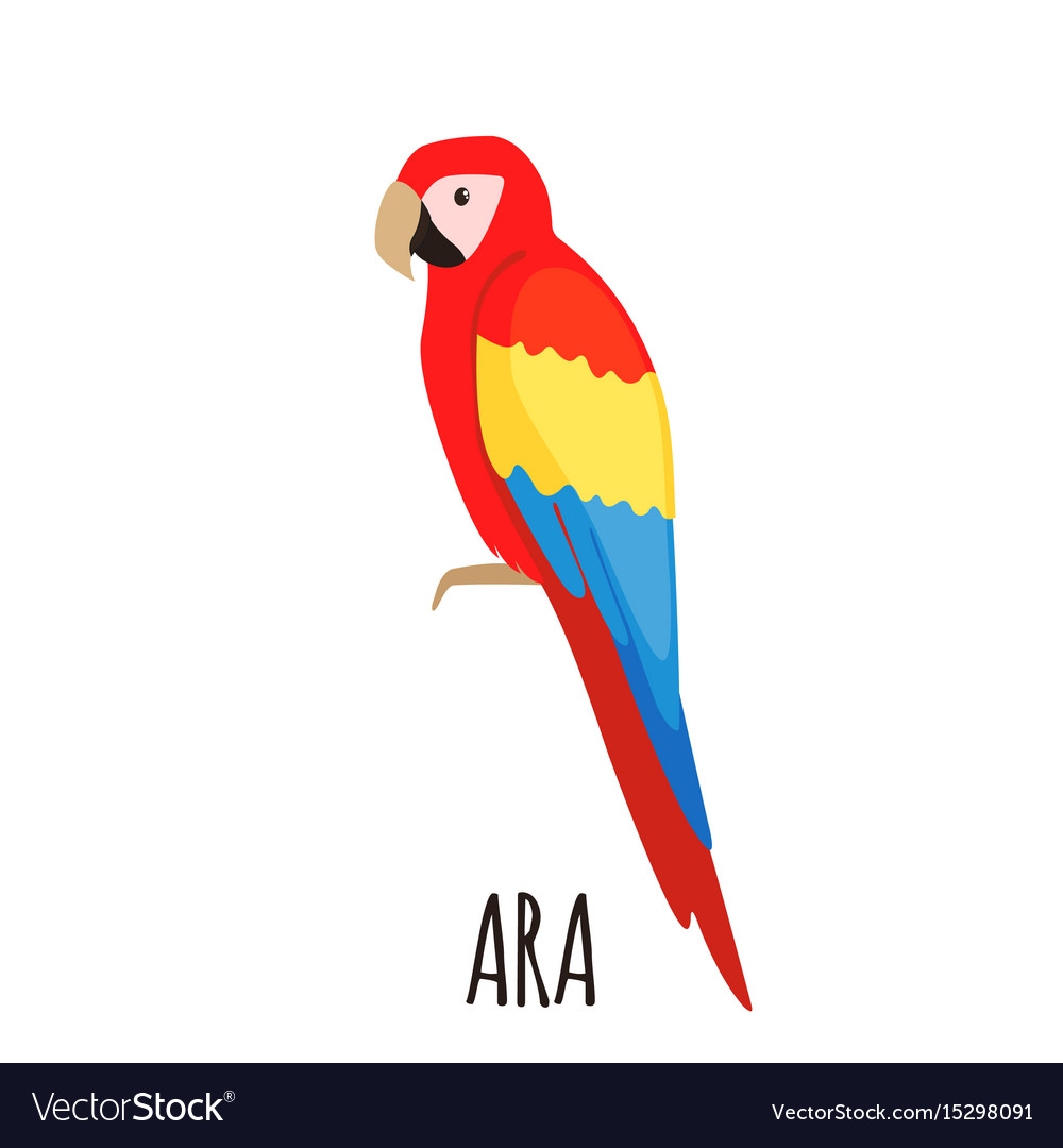 Cute ara parrot in flat style