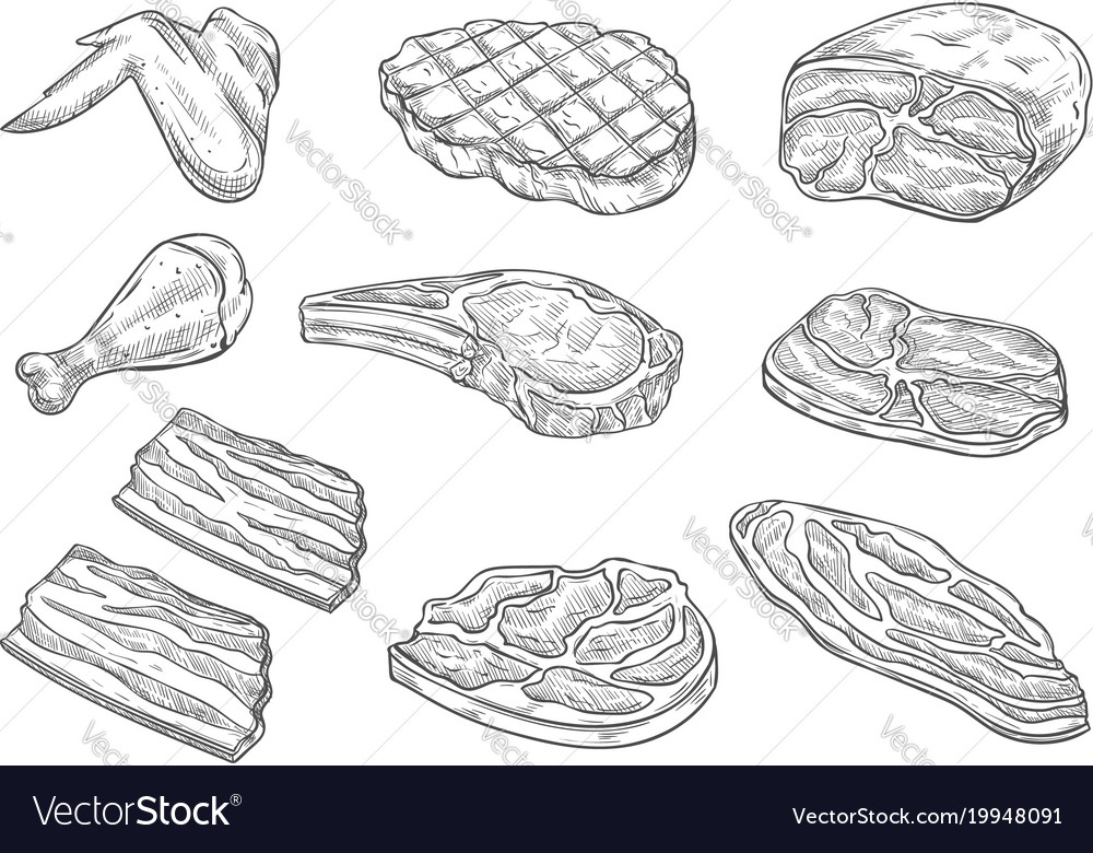 Sketch butchery meat chicken icons vector image
