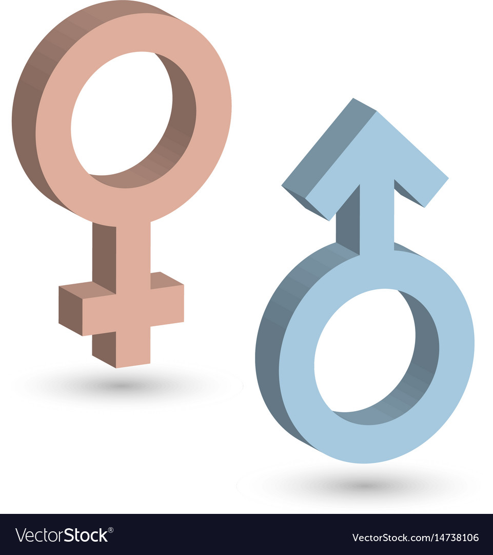 3d male and female symbols in blue and pink color vector image