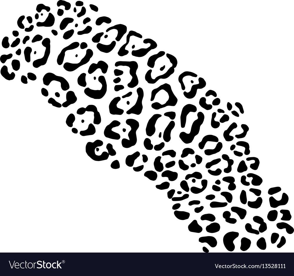 Background of leopard skin pattern