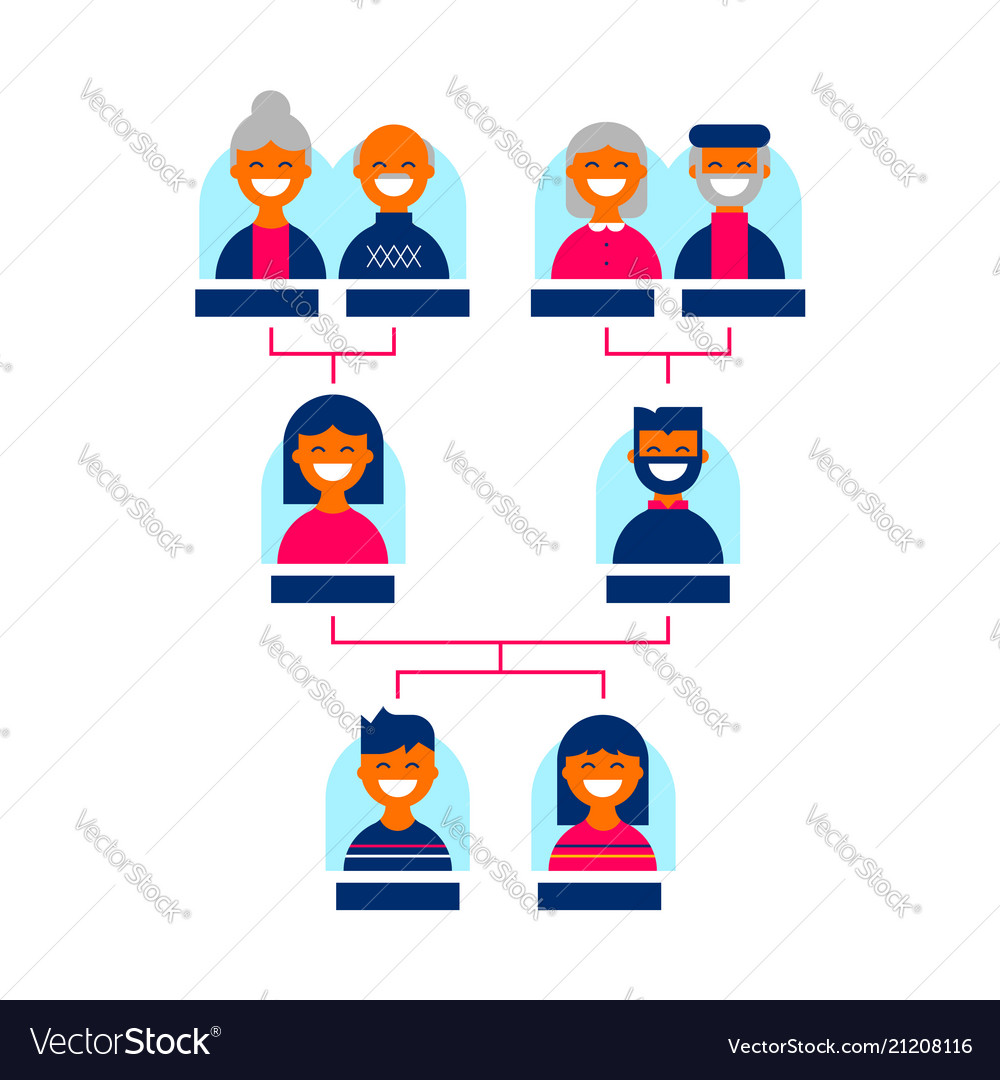 Family Tree Template For Genealogy Line Isolated Vector Image