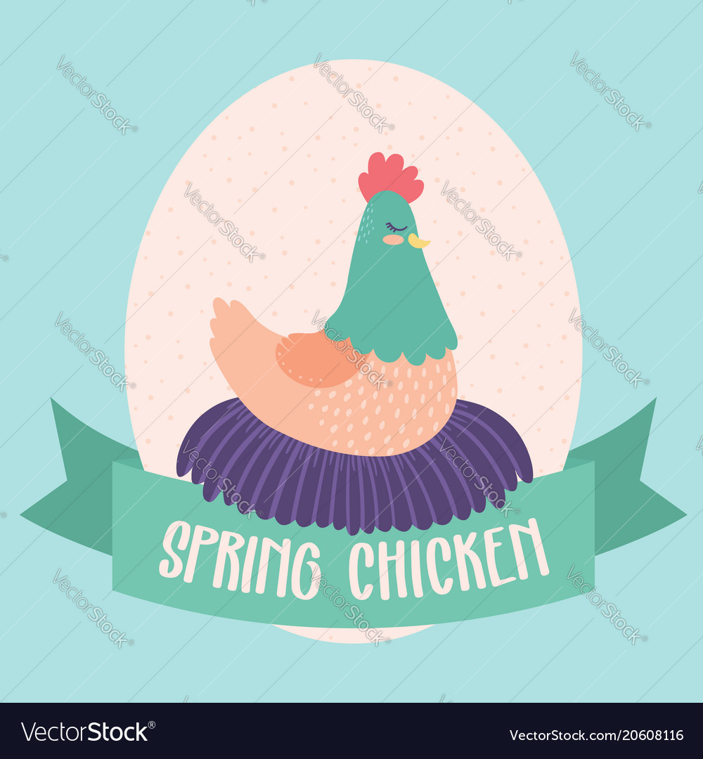 Spring chicken clip art