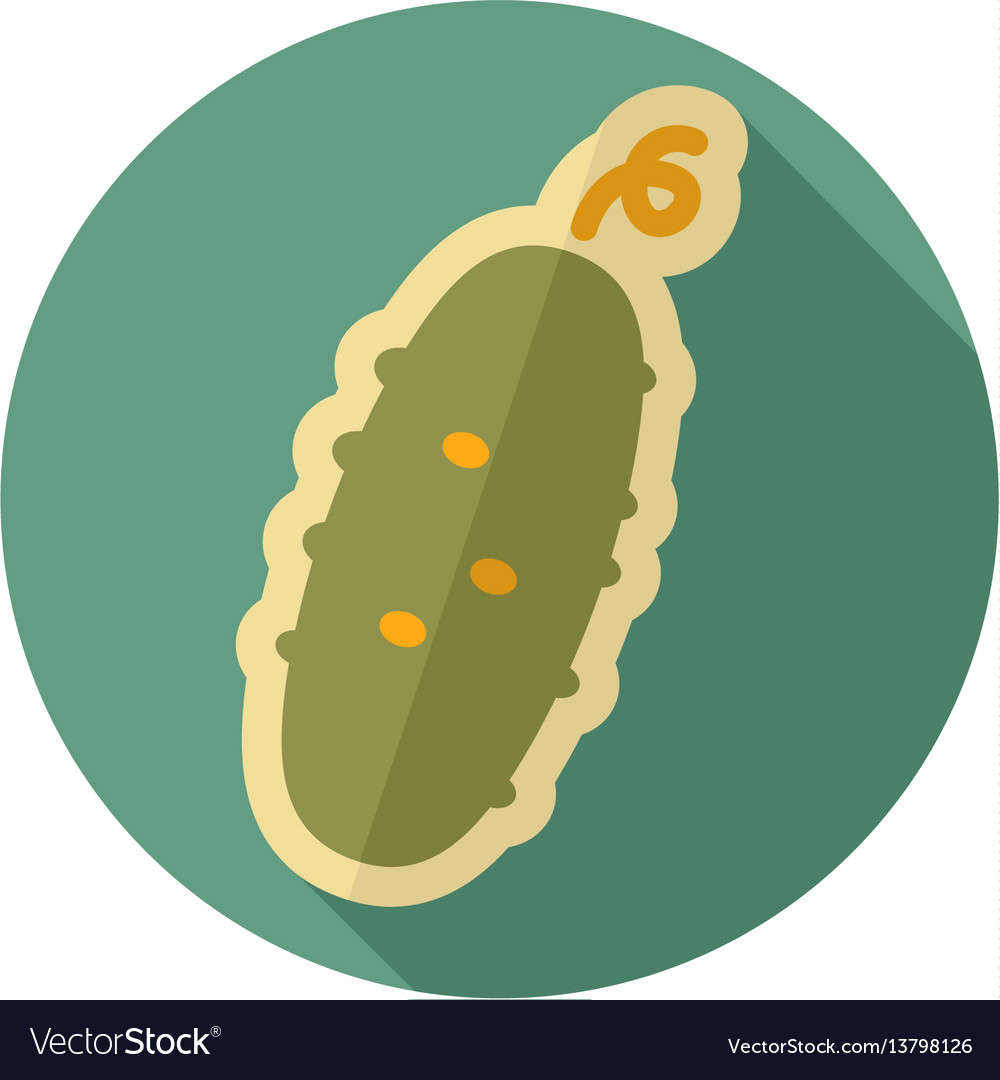 Cucumber flat icon vegetable