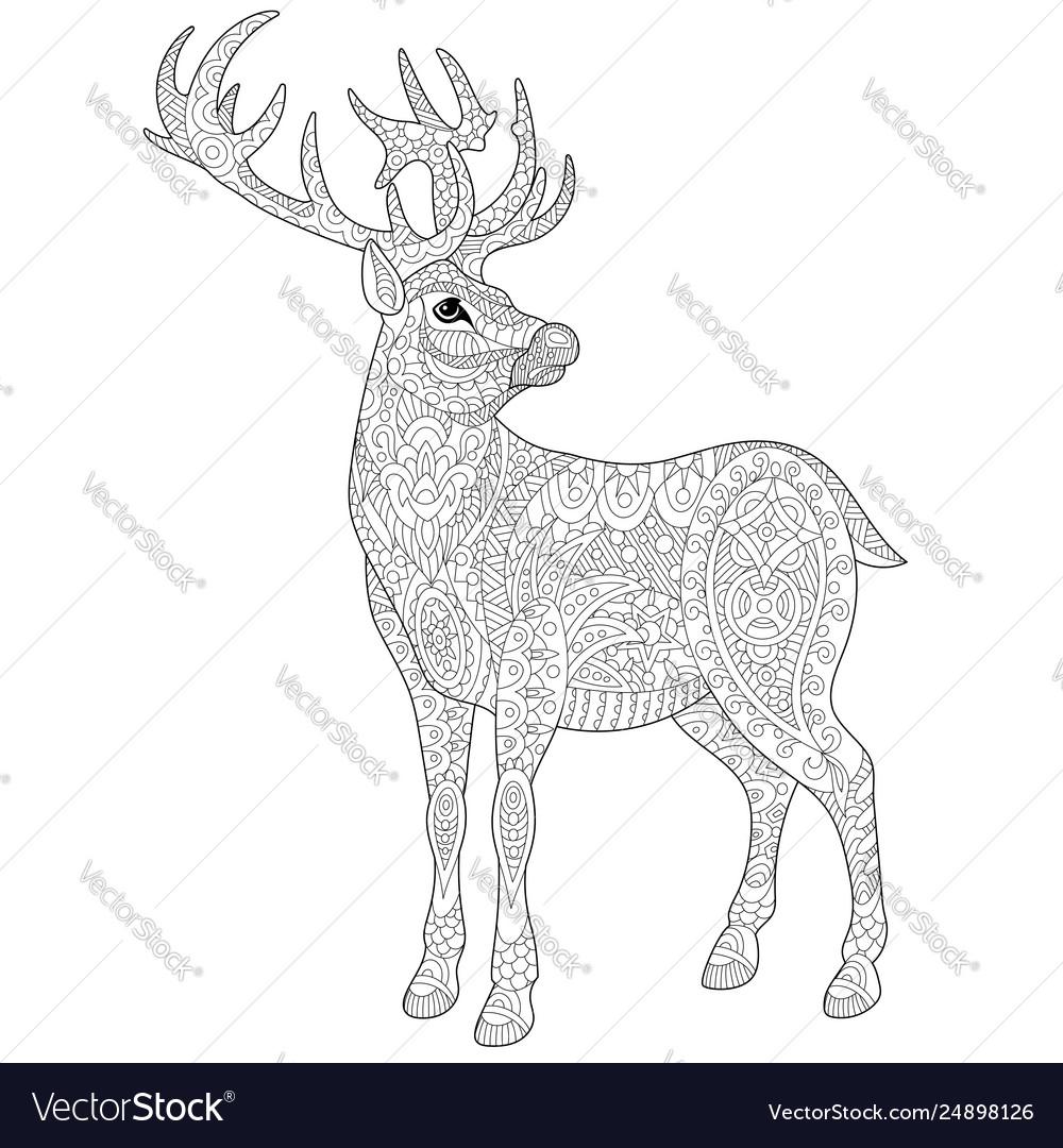 deer adult coloring page vector