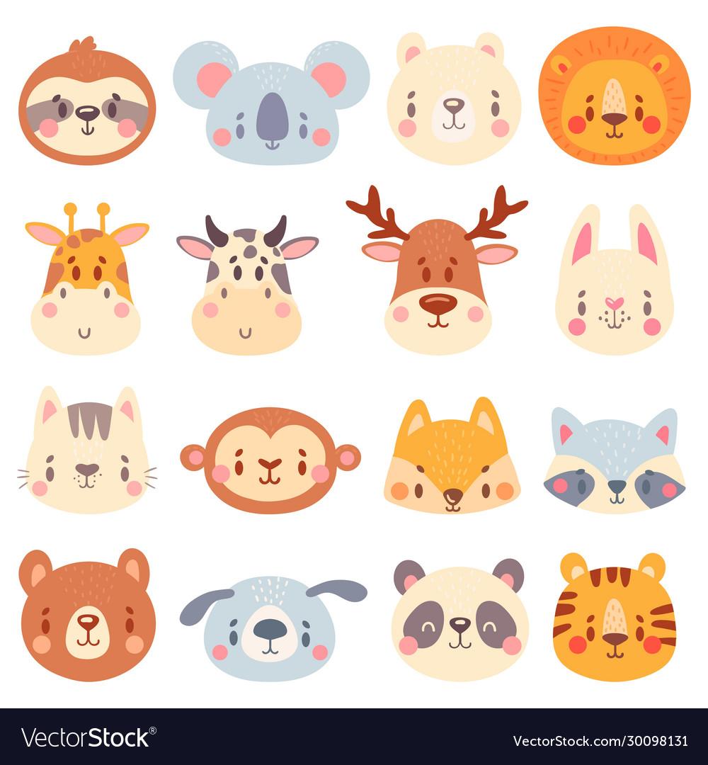 Cute animal faces color animal portraits