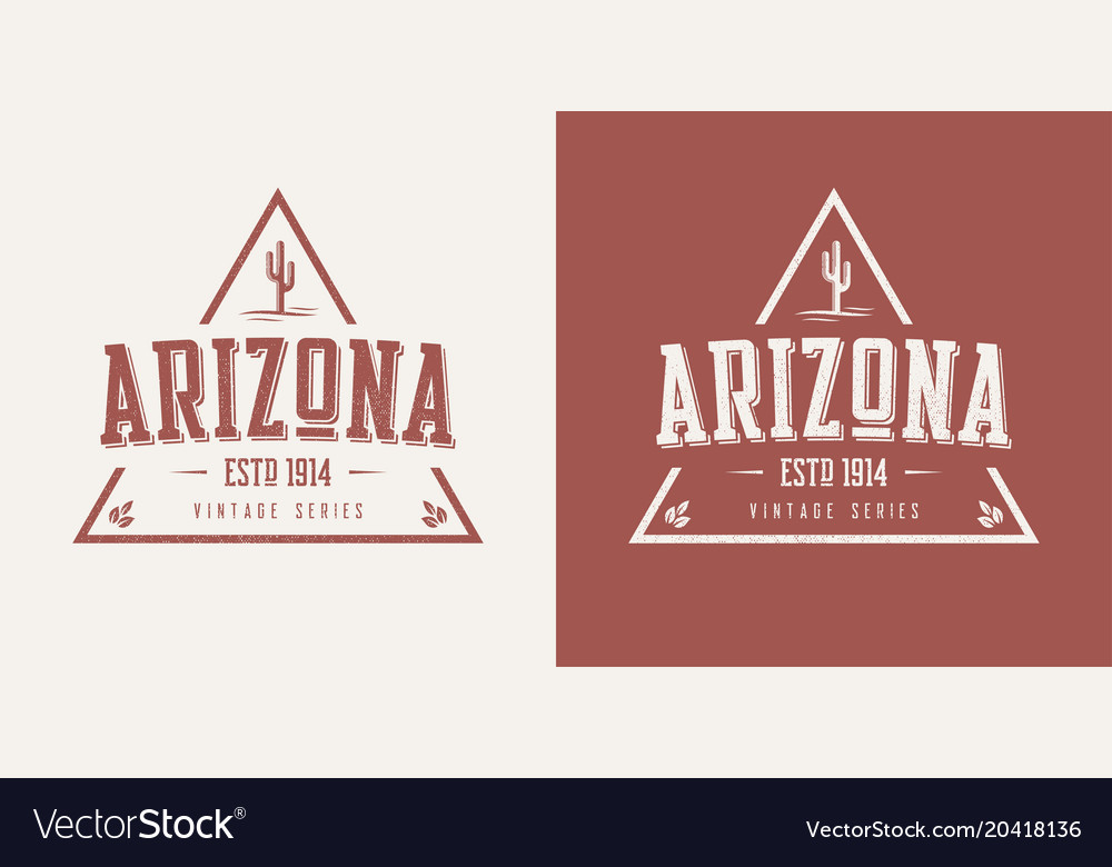 Arizona state textured vintage t-shirt and