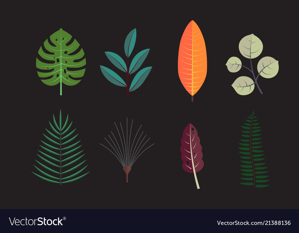 Forest tree leaves collection icons