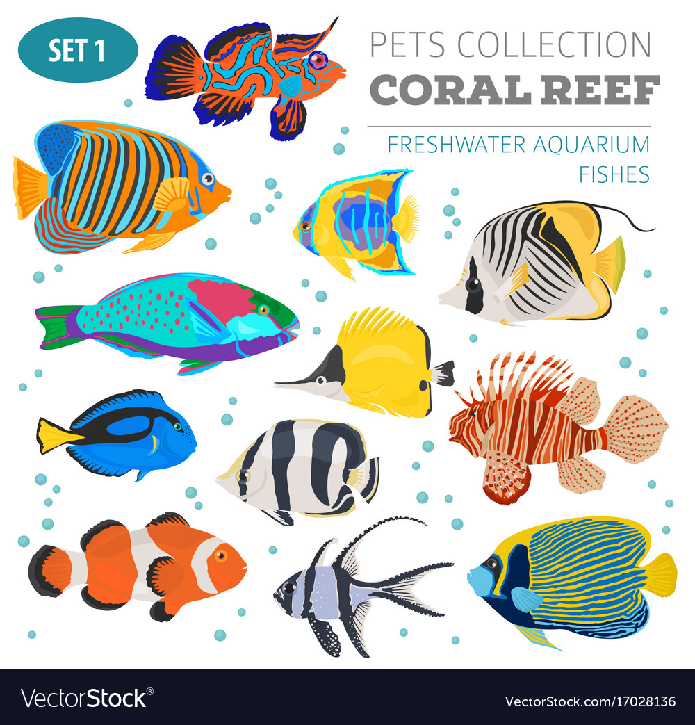 Freshwater Aquarium Fish Breeds Icon Set Flat Vector Image