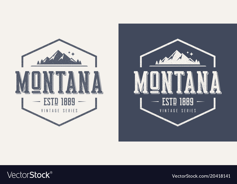 Montana state textured vintage t-shirt and