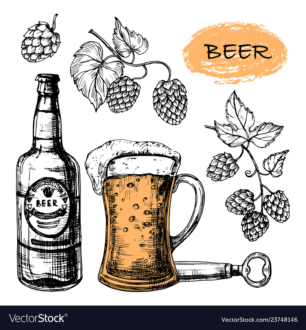 Sketched beer collection with glass bottle and
