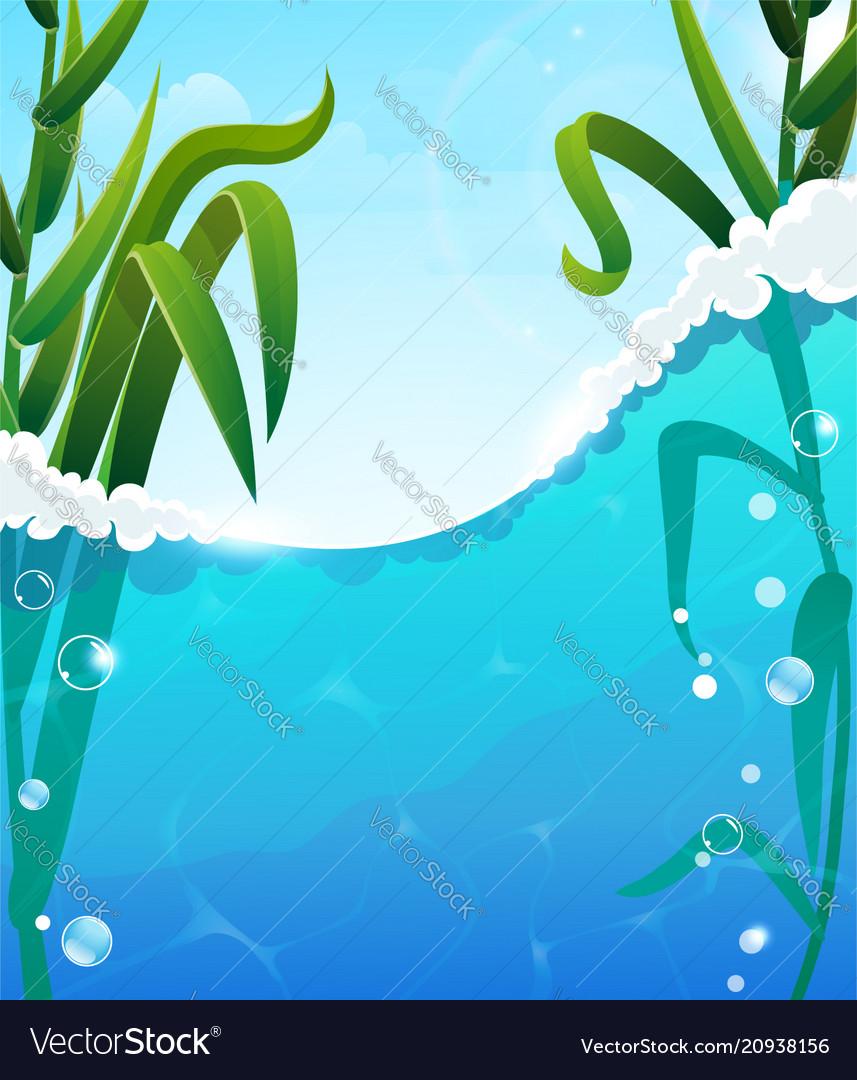 River and aquatic plants