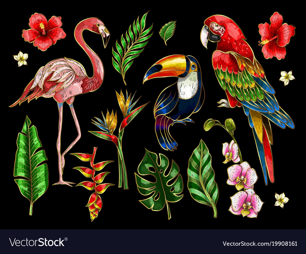 Parrot toucan flamingo and flowers embroidery vector image