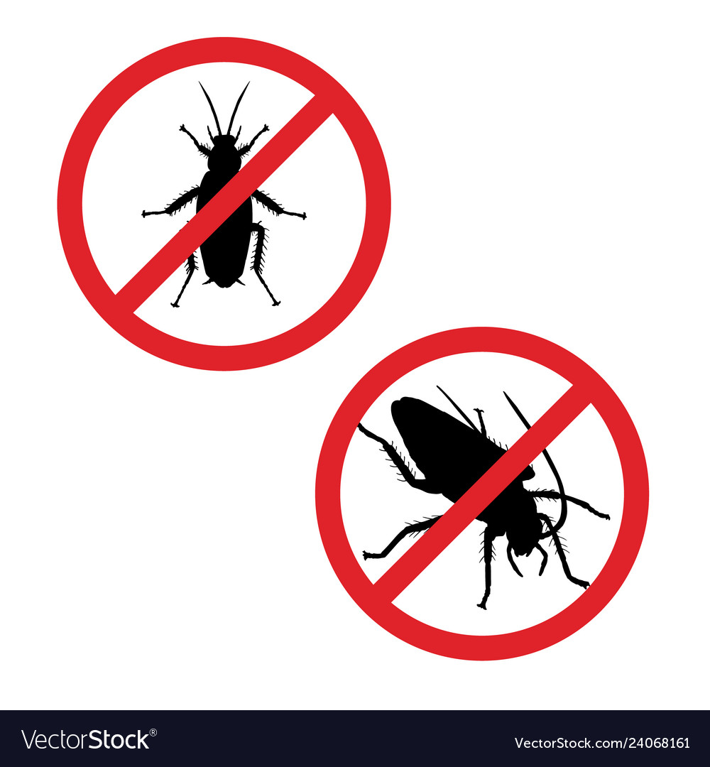 Silhouette of cockroach in prohibition sign icon