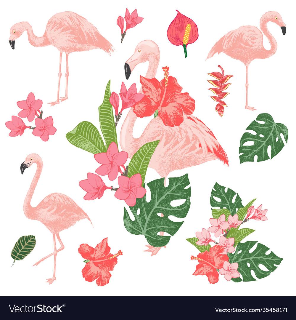 Tropical flamingos set