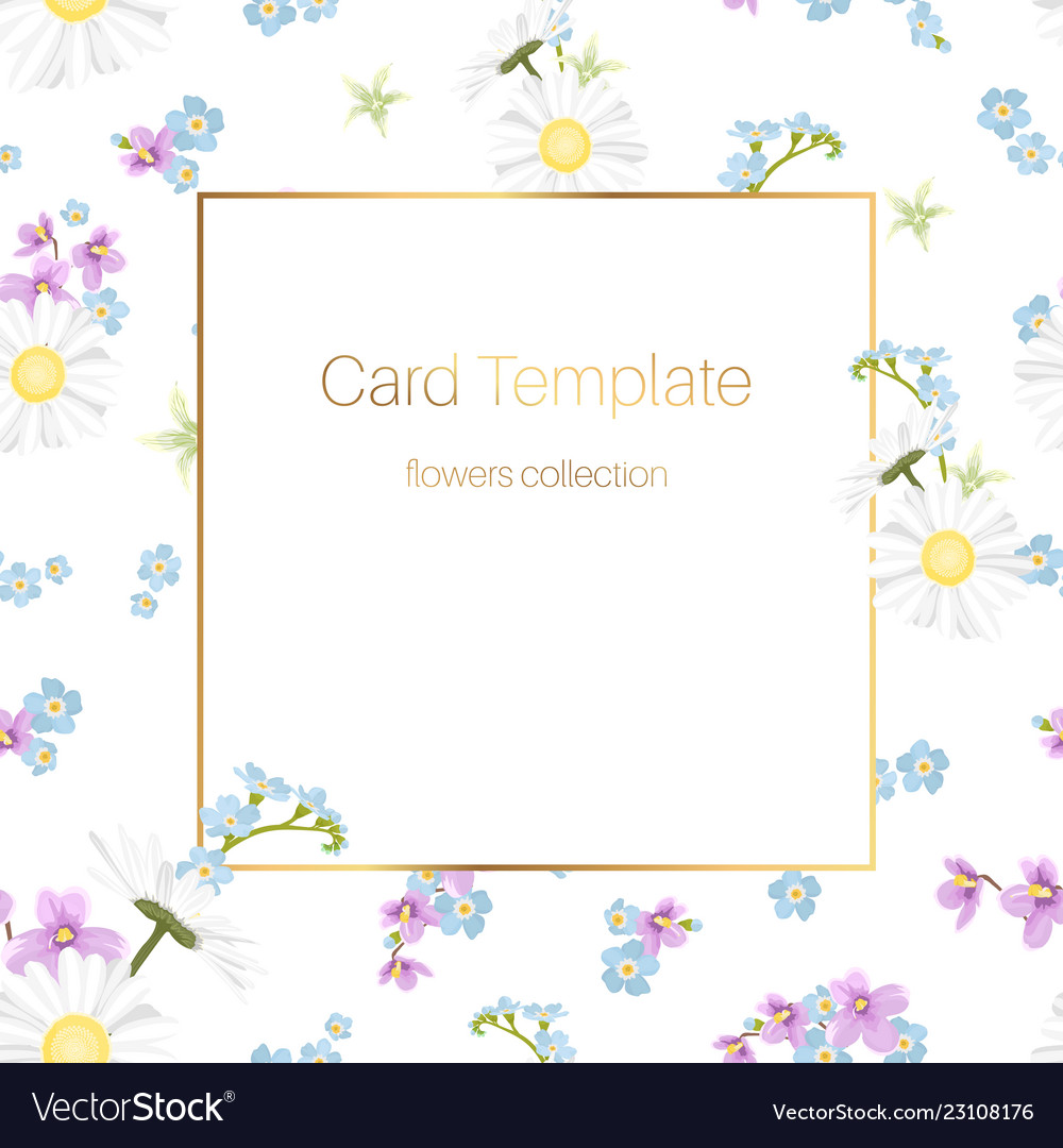 Floral collection card template daisy chamomile