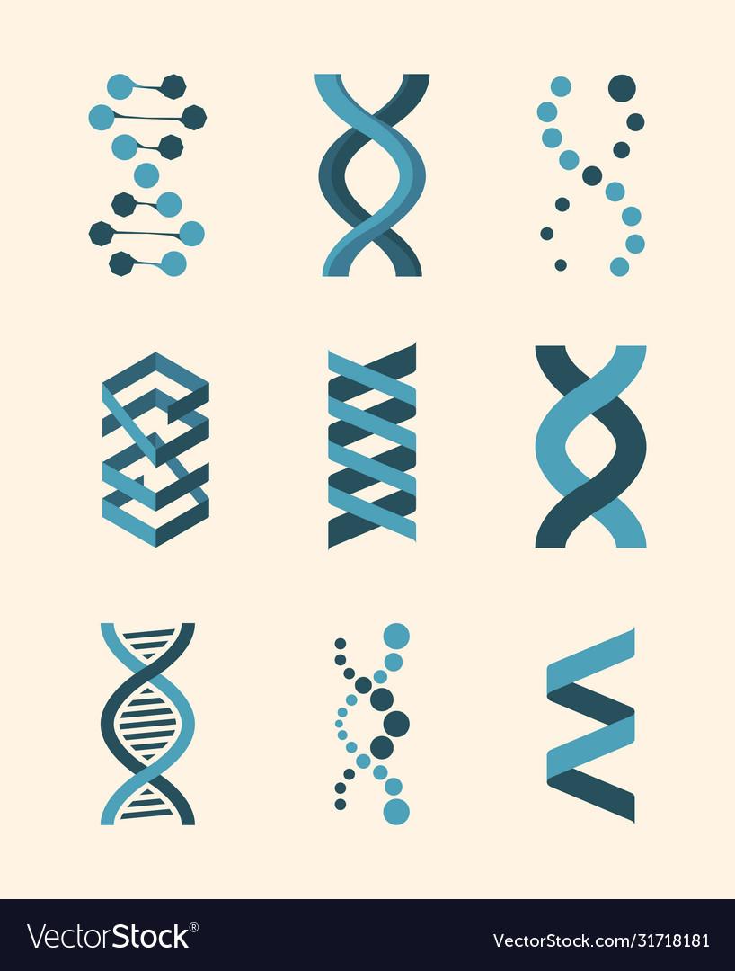 Molecule structure dna helix set genetic code