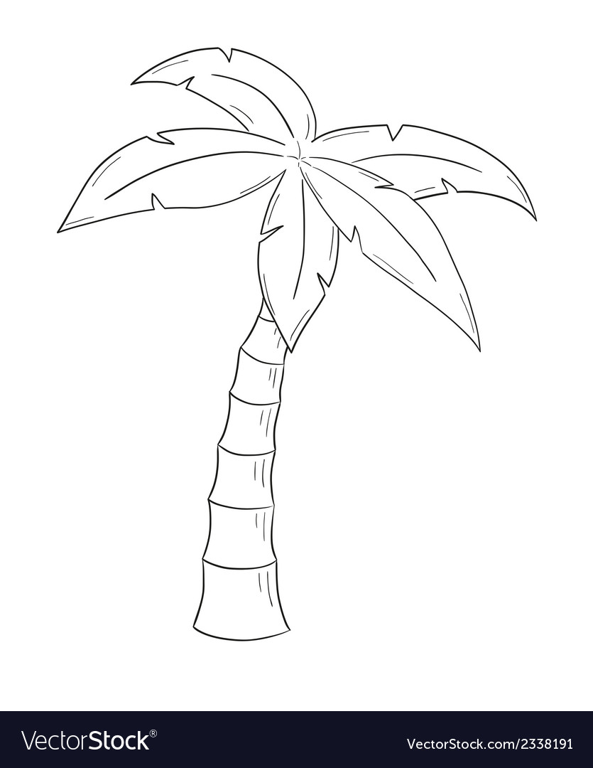 How to Draw a Palm Tree | Easy Drawing Guides