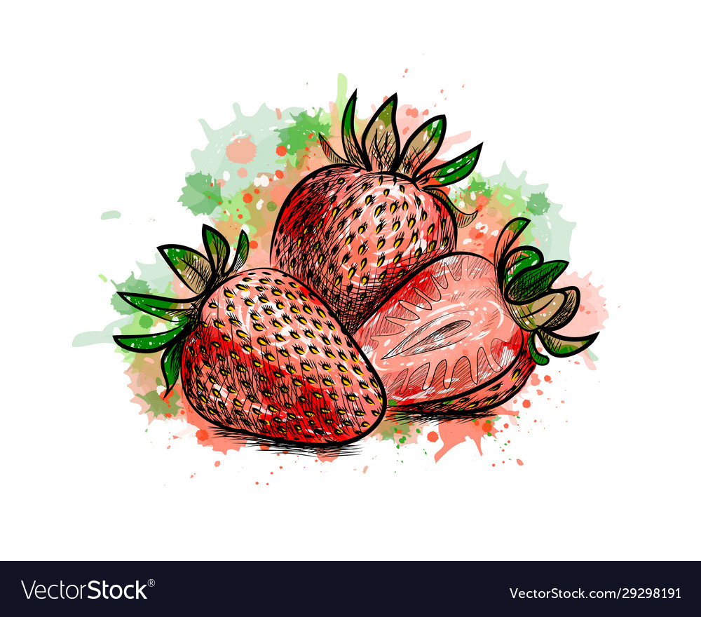 Strawberry sweet fruit from a splash of