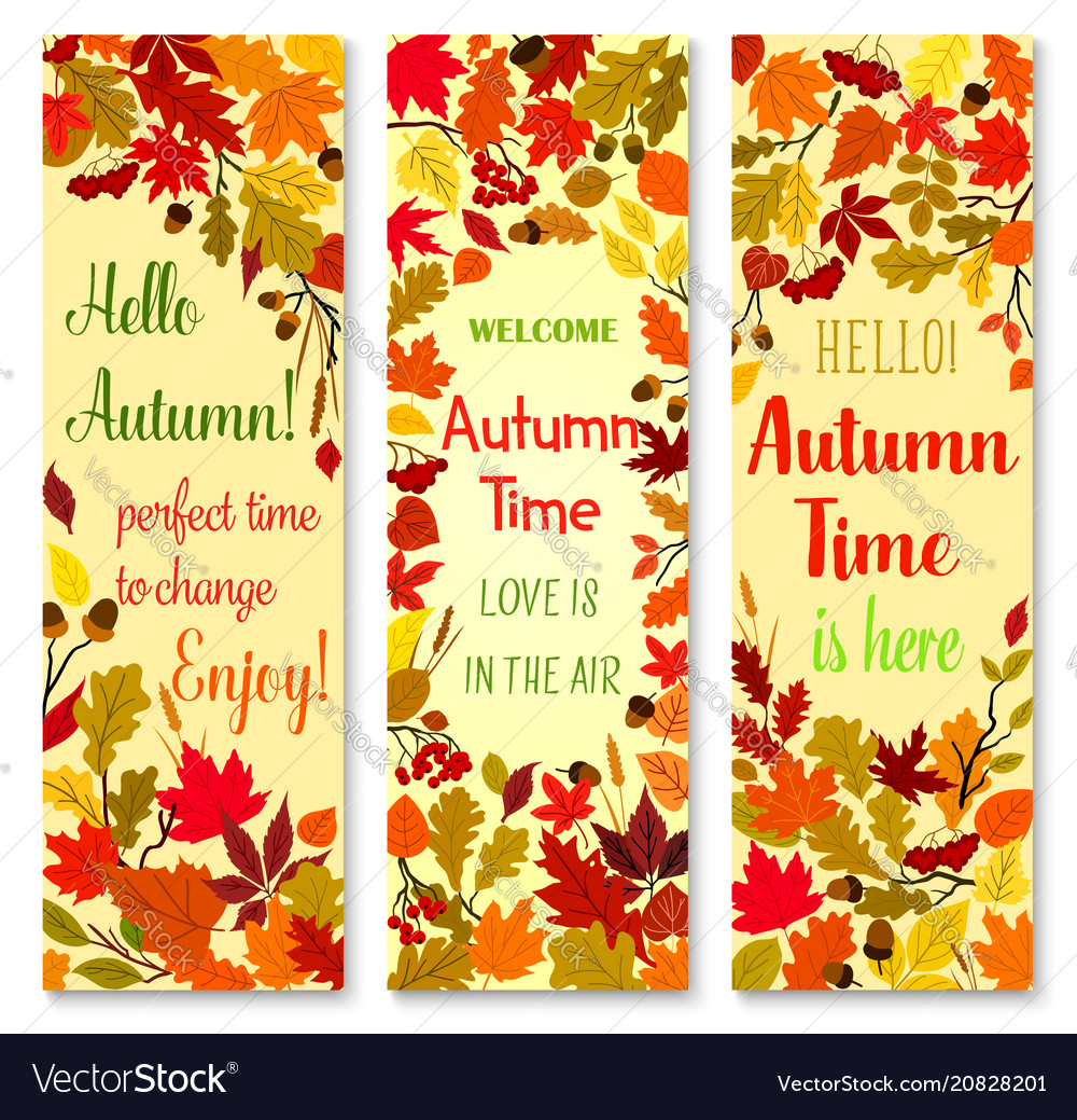Autumn season and fall nature banner set design
