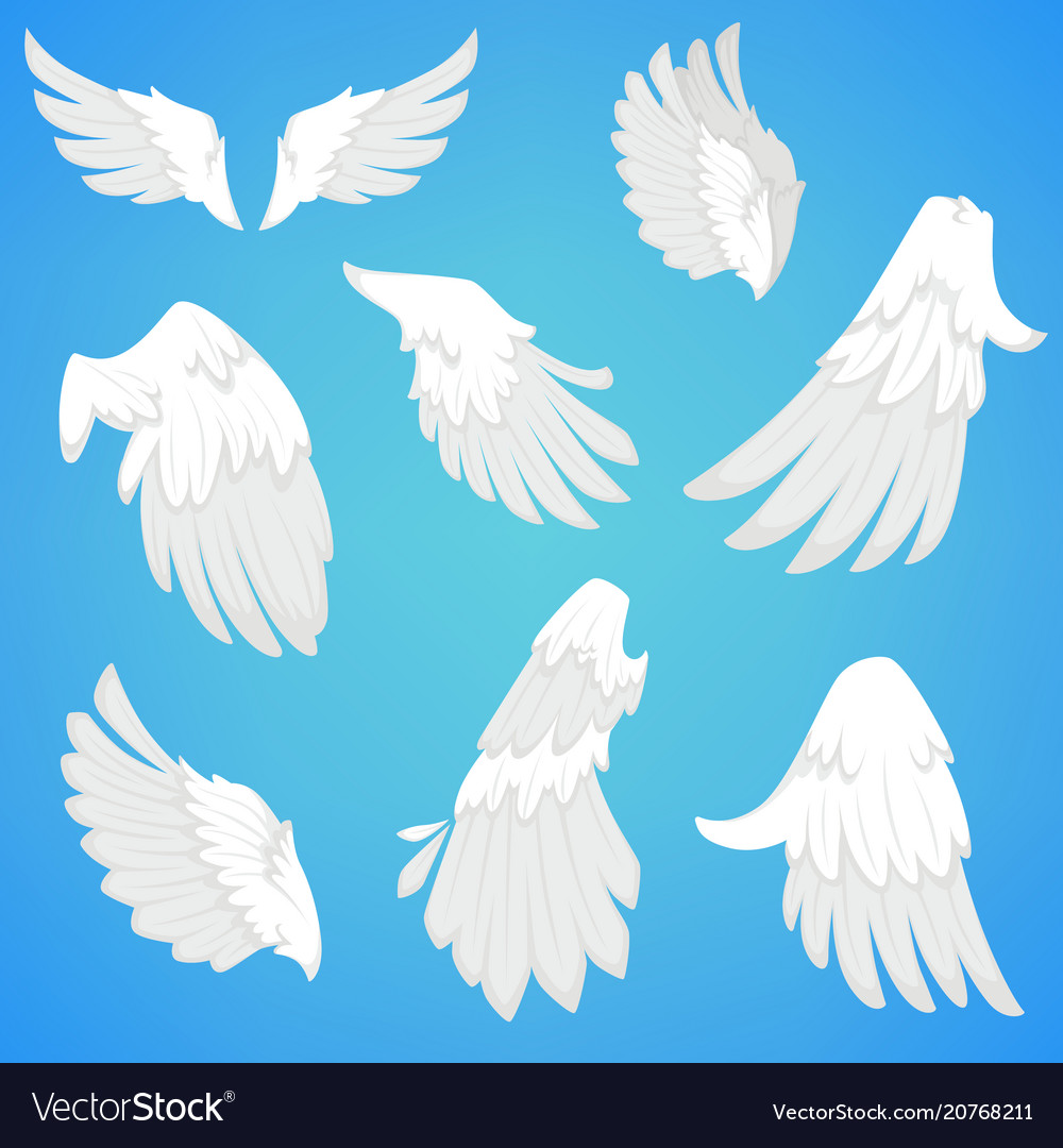 Wings white bird feather icons
