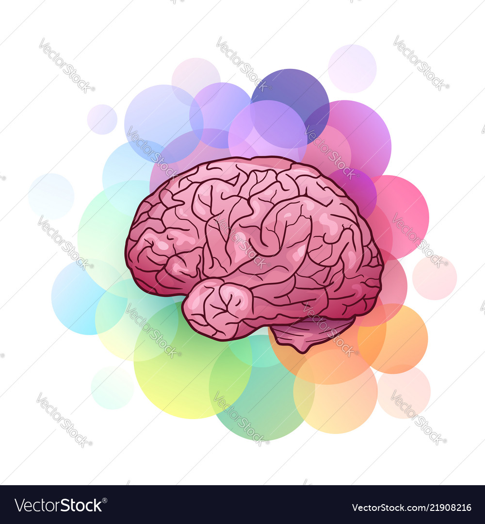 Cartoon Human Brain Royalty Free Vector Image Vectorstock
