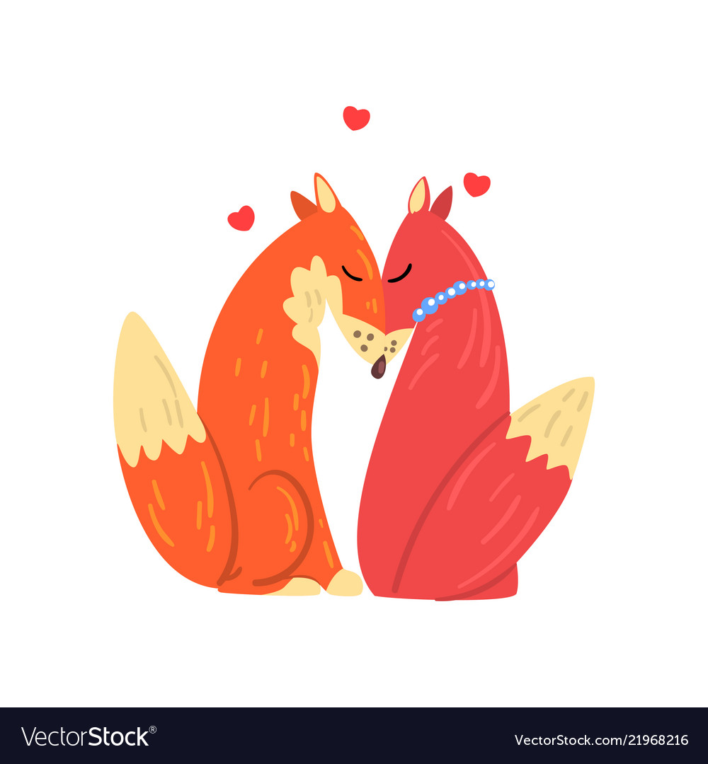 Couple of red foxes in love two happy wild