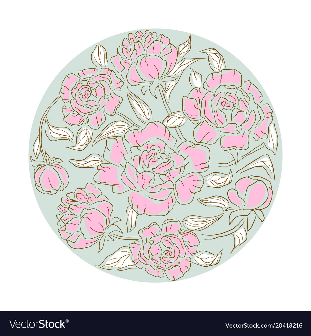 Peonies flower rosette isolated composition
