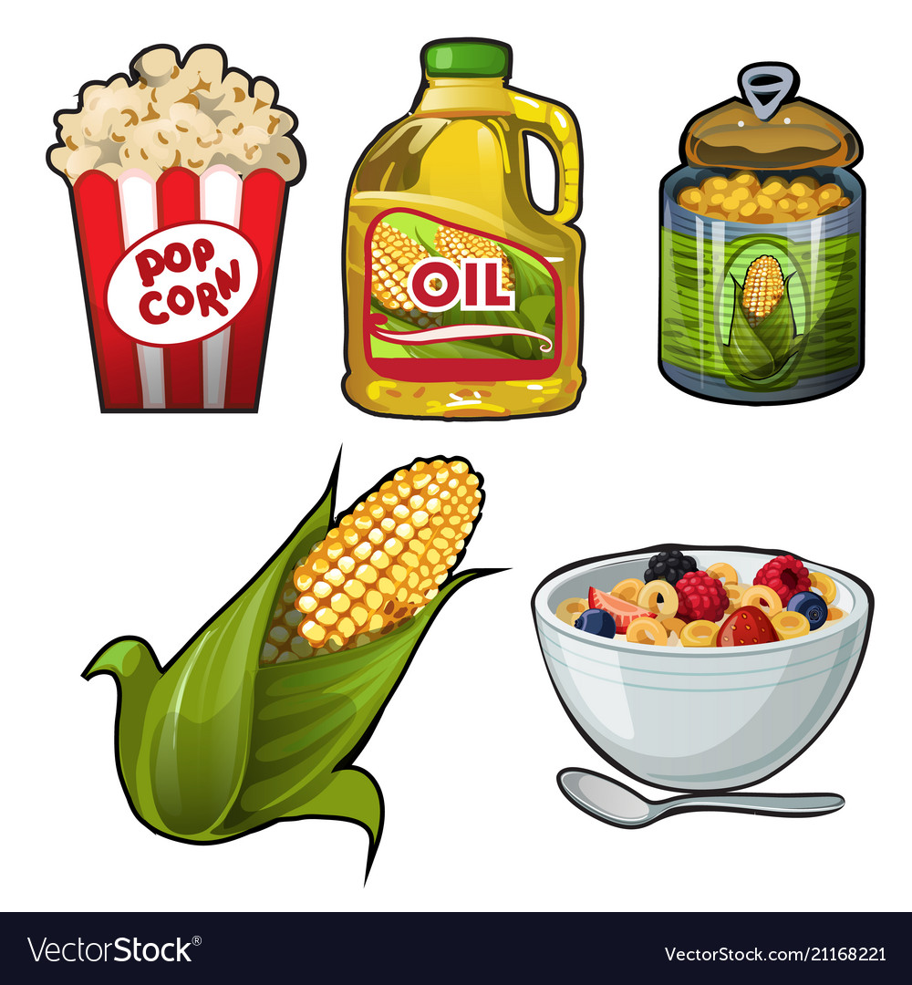 Set of tasty and useful food of corn isolated on