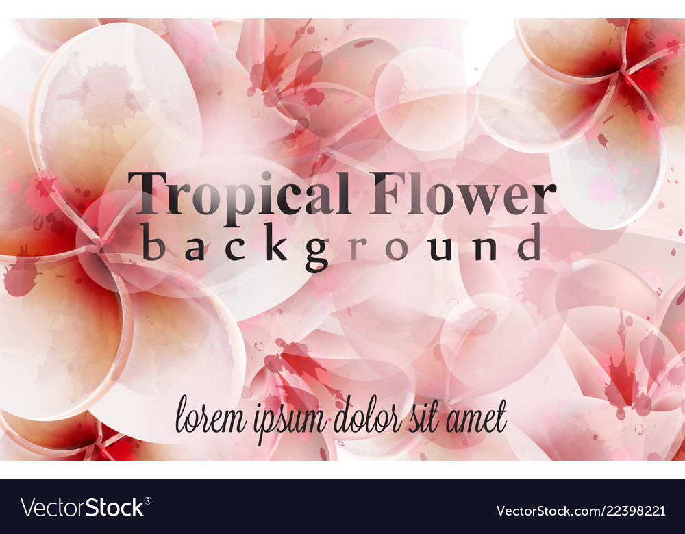 Tropical flowers watercolor background delicate