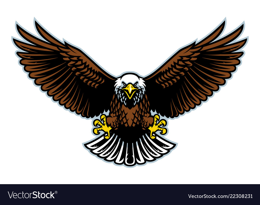 bald eagle wings open royalty free vector image vectorstock