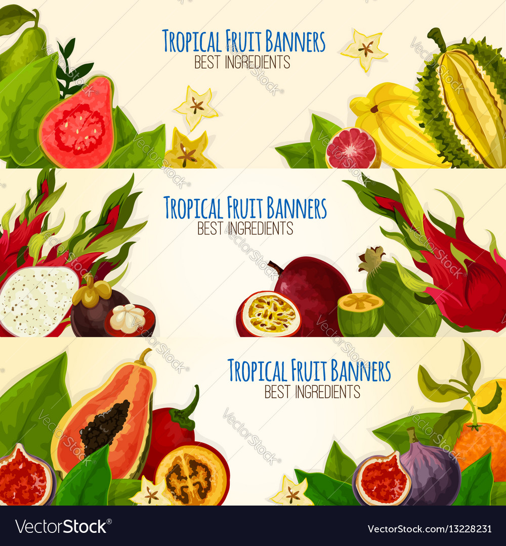 Exotic tropical fruit banner set for food design