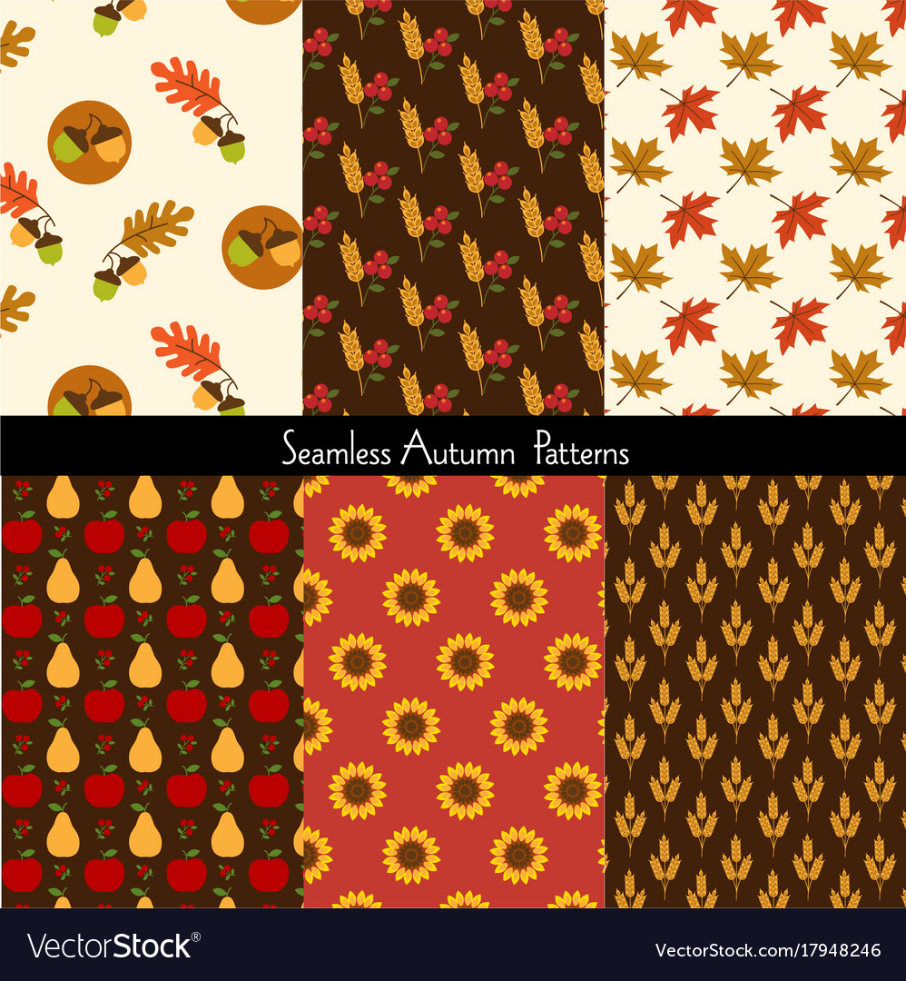 Seamless autumn patterns vector image
