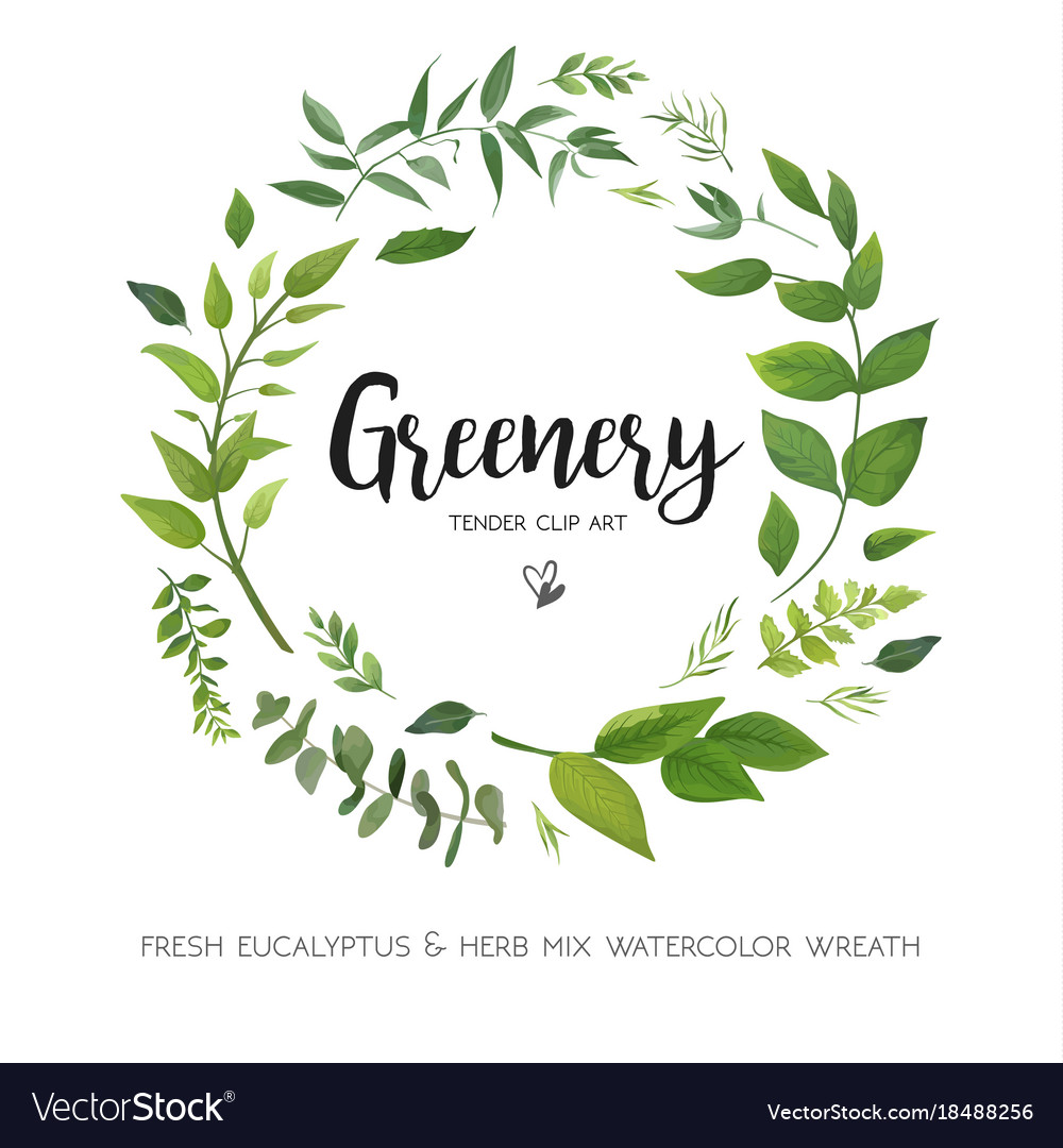 Floral card design with green eucalyptus fern vector image
