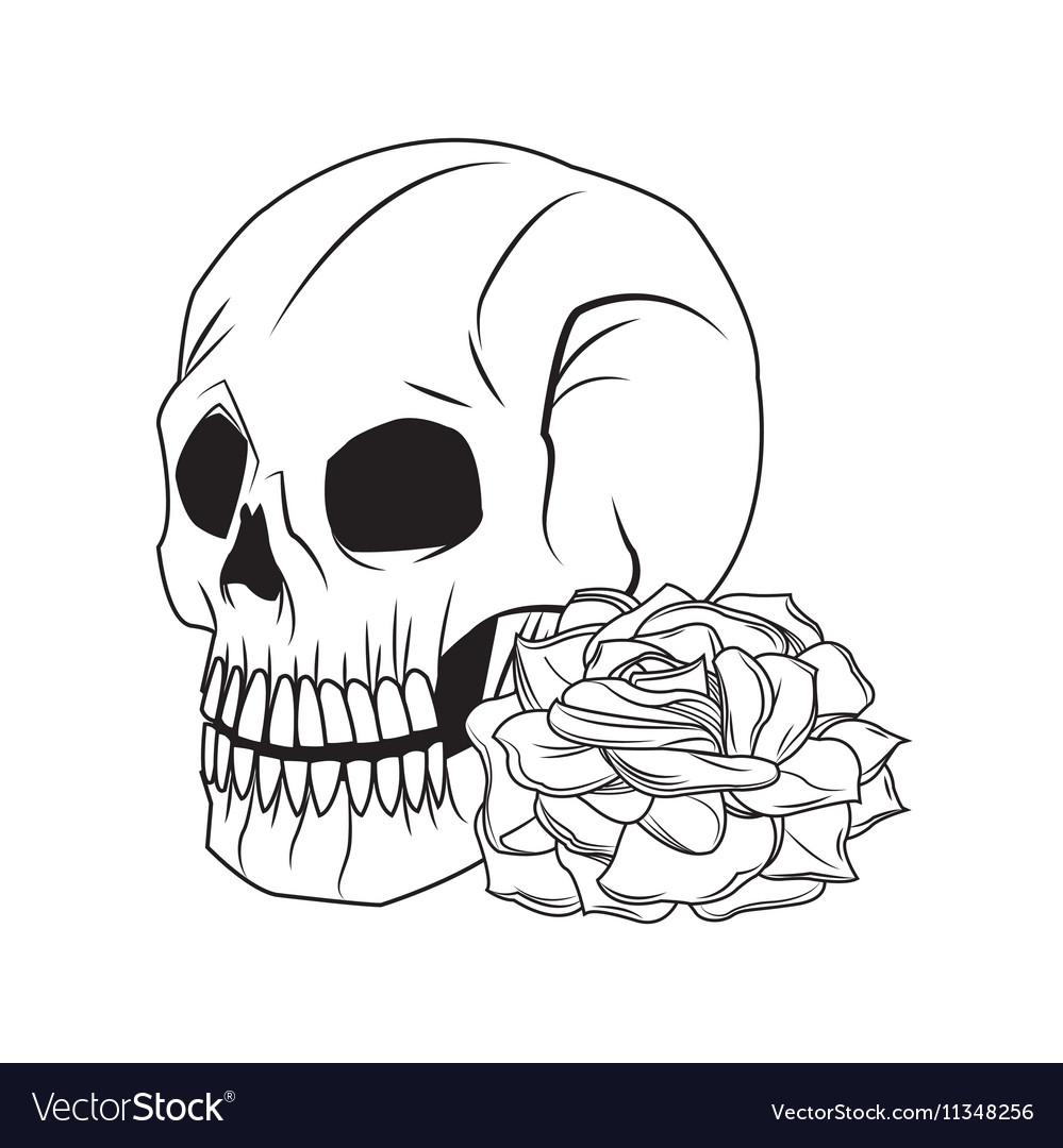 Skull and rose tattoo art design